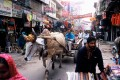 Shoptastic India!