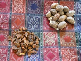 Star anise and nutmeg - lovely gifts and so easy to bring home