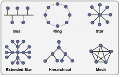 network models and topologies
