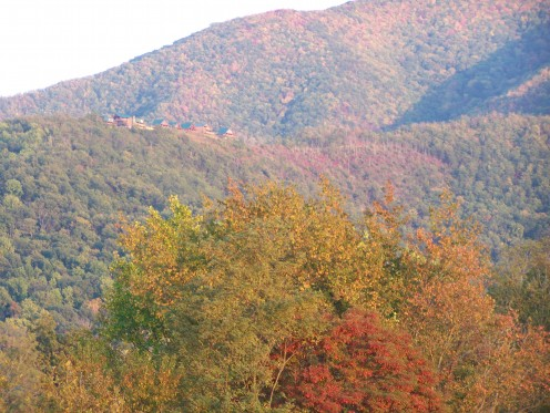 Fall color in the Smoky Mountains is a joy to behold.