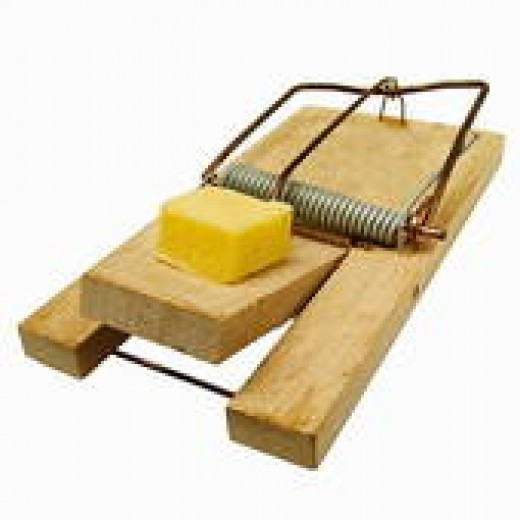 NICE TRY, BUT NO CIGAR. THE OLD STAND-BY RAT TRAP WITH A LUSCIOUS CHUNK OF CHEESE.