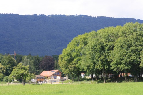 Hiking Trails & Destinations starting in Preles, Biel, Switzerland