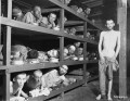 The Holocaust, Nazi Genocide (1933-1945). List of Genocides of the 20th Century