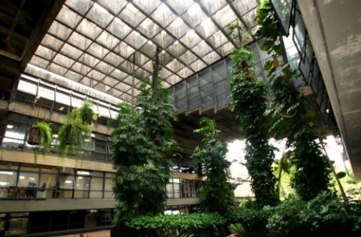 The architect Oscar Niemeyer designed its main building, the Central Institute of Sciences