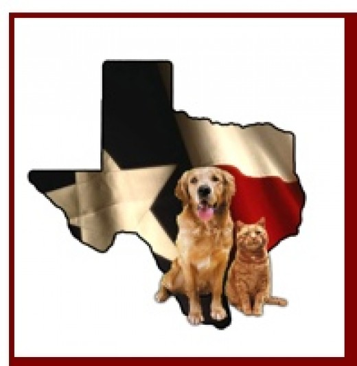 Texas State Board of Veterinary Medical Examiners