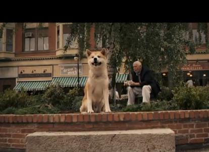 Hachiko Movie, waiting for its master at the station