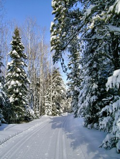 What Are the Best Winter Wonderland Vacation Destination Spots?