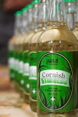 """Cornish Stinger"" a commercial Nettle Beer."