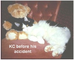 KC before his accident