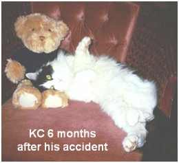 KC 6 months after his accident