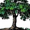 truforte profile image
