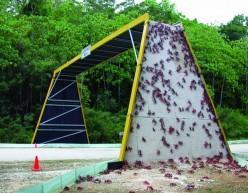 Crab bridge
