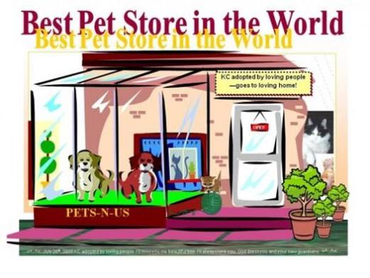 Pets-N-Us - South Delta