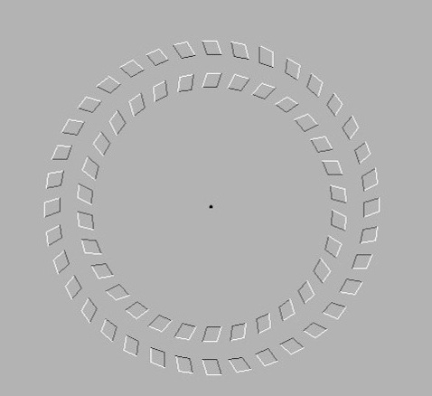 Move your head back and forth toward the center dot to see the illusion rotate.