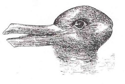 Is it a Rabbit or a Duck?