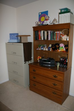 File and shelf view