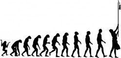 Why do you think that evolution is not correct