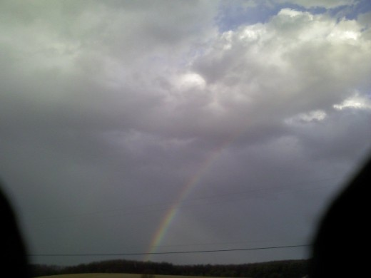 A rainbow after a storm!