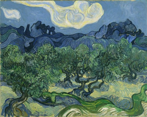 Van Gogh The Olive Trees