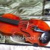 violinmusic profile image