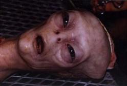 The Extraterrestrial/UFO Presence: Alien Eyewitness Account  -  Aliens Walk Amongst Us