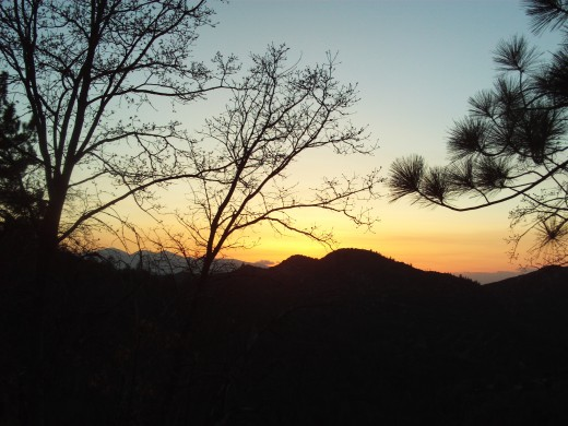 Here we can see the silhouette of oak trees directly in front of Mount Baldy.