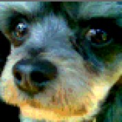 Durfee profile image