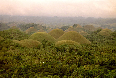 This group of hills in the famous Chocolate Hills are sometimes jokingly called the Pregnant Woman, but it will take some fantasy to recognize it.