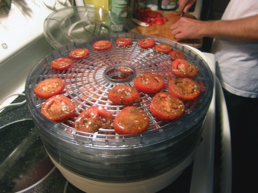 Preparing our tomatoes and placing them in the dehydrator.
