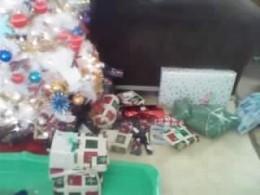 humble tree, kids set it up