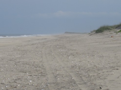 Feeling like you are the only people on earth at Pea Island