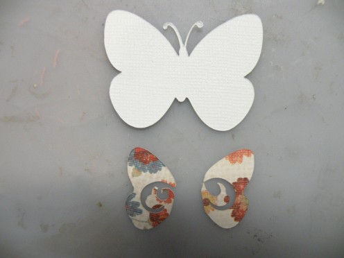 Butterfly layers