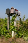 Important Dates in U.S. Post Office History: 1945 - Present; Postal Mail Delivery Services