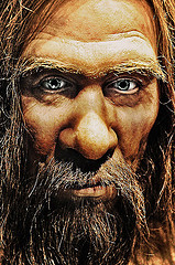 Neanderthal Source: flickr.com