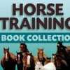 Horseman profile image