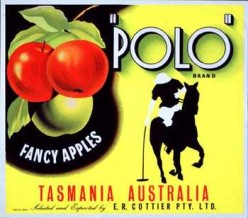 free cross stitch patttern Tasmanian Apples
