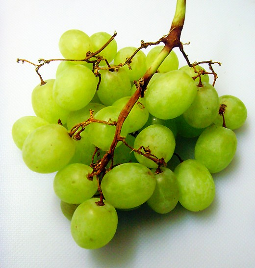 Healthy Grapes