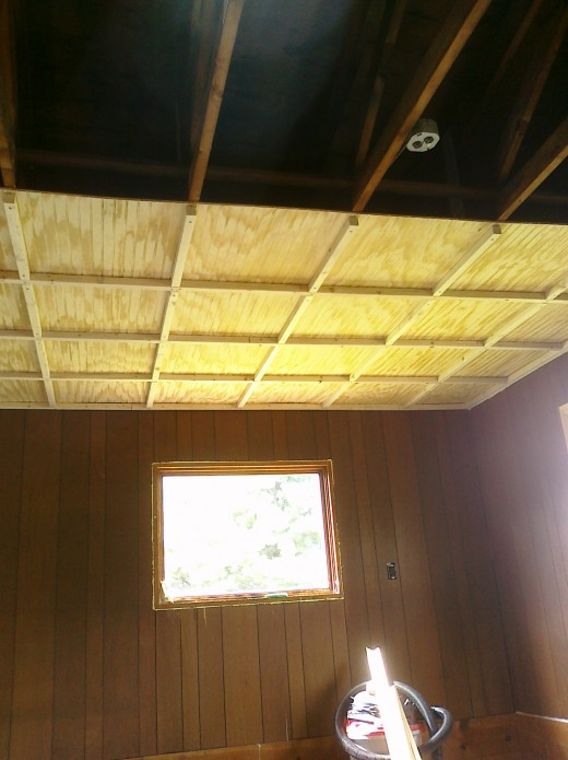 2x2 by the time the entire ceiling was installed we could have worked for Noah