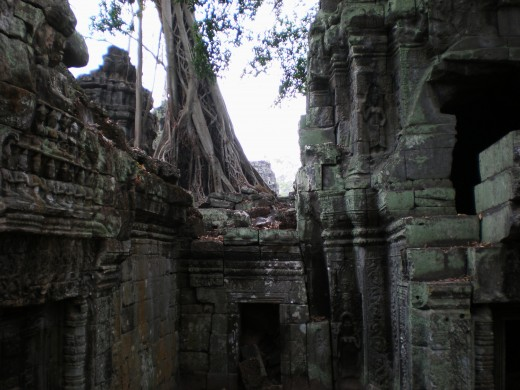 Ta Prohm, Temples of Angkor, Cambodia