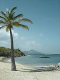 Nevis: The Caribbean Island Choice for Nature Lovers