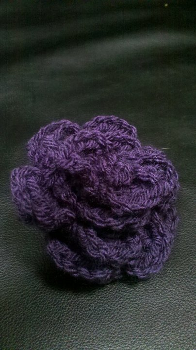 My first purple rose flower