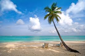 You can enjoy a beautiful tropical vacation  by the savings you will gleam by following my advice on energy savings!