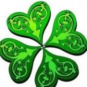 clover-2011 profile image