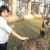 Amy Xuan profile image