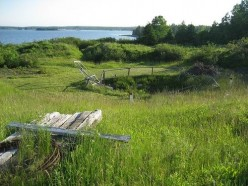 Oak Island and The Money Pit