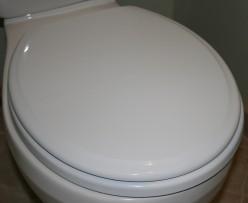 Quirky, Fun & Downright Bizarre Novelty Toilet Seats