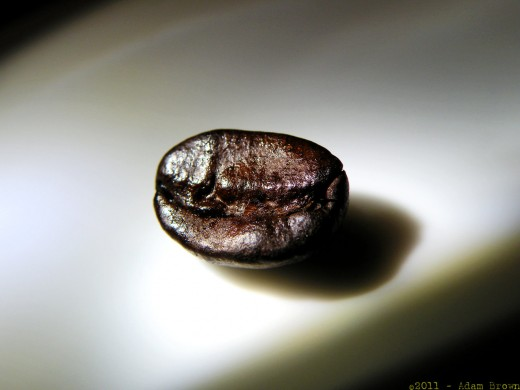 Something as small as a coffee bean can be photographed easily with proper lighting. This same ease of photographicality transfers right over to product photography, as well.