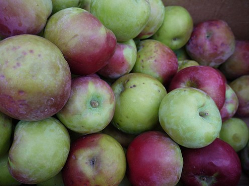 Apples top the dirty dozen list for carrying the most pesticides. Non-organic applesauce, apple juice, and apple pastries are notorious for containing pesticides as well.