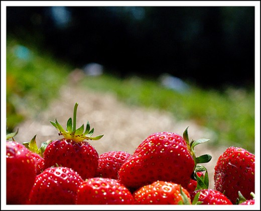 Organic strawberries tend to be smaller, sweeter, and redder.