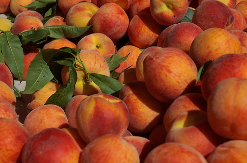 Organic peaches make a delicious, pesticide-free treat on a warm summer day.